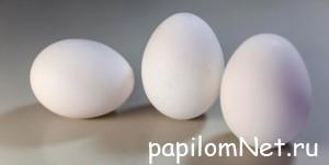 Яичный белок от папилломы на шее